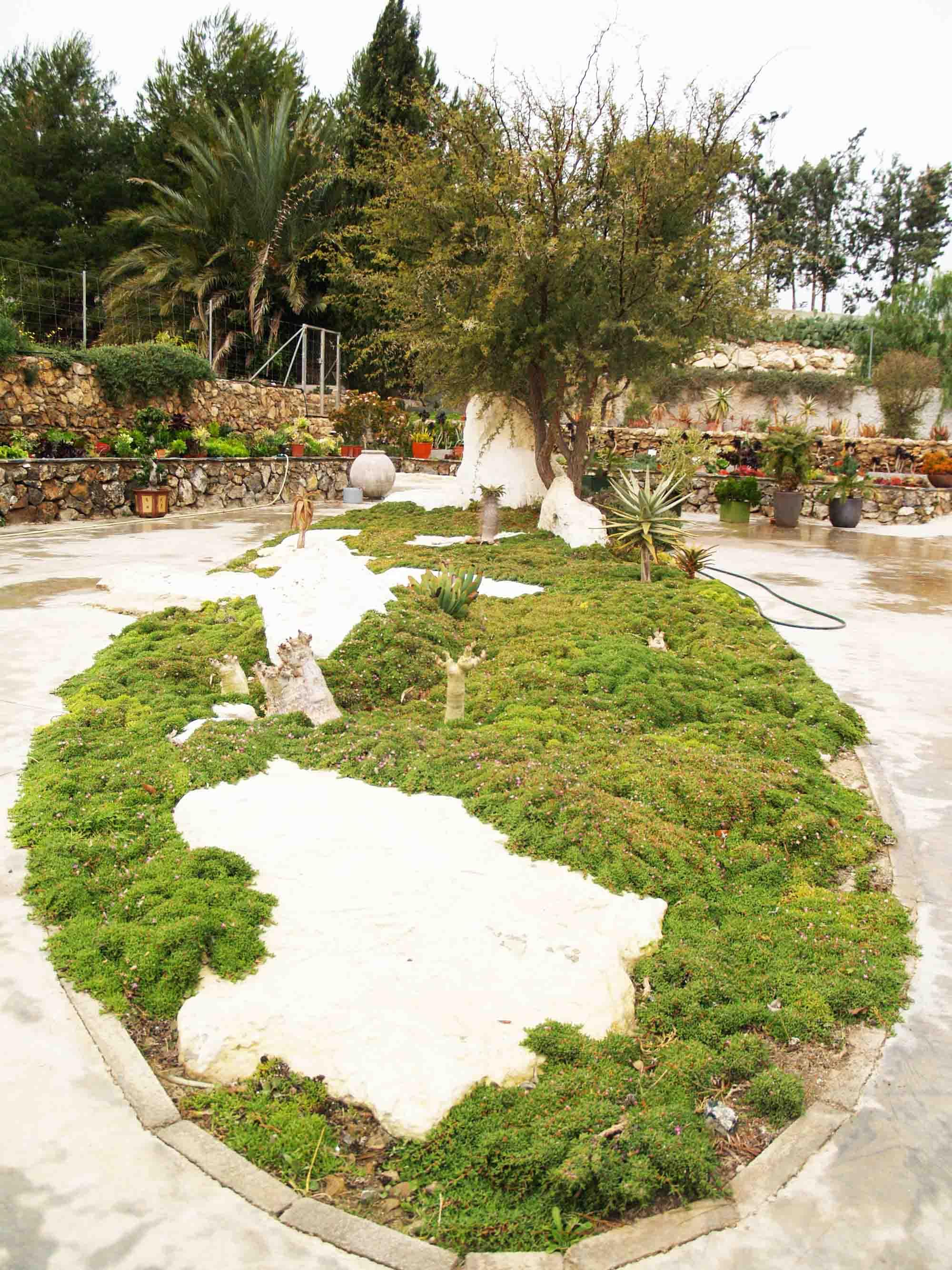 Casa Cactus Nijar