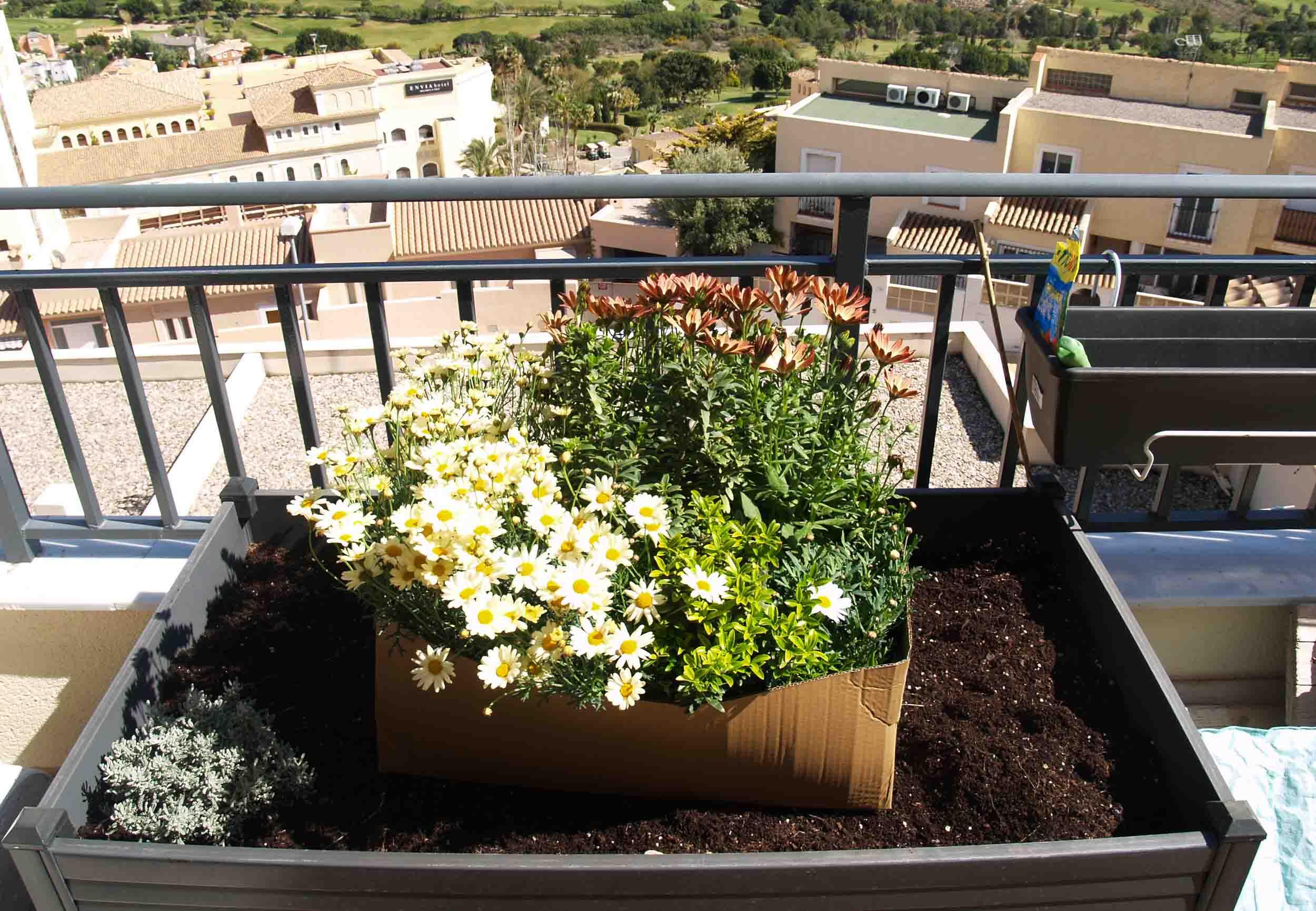 preparacion jardín