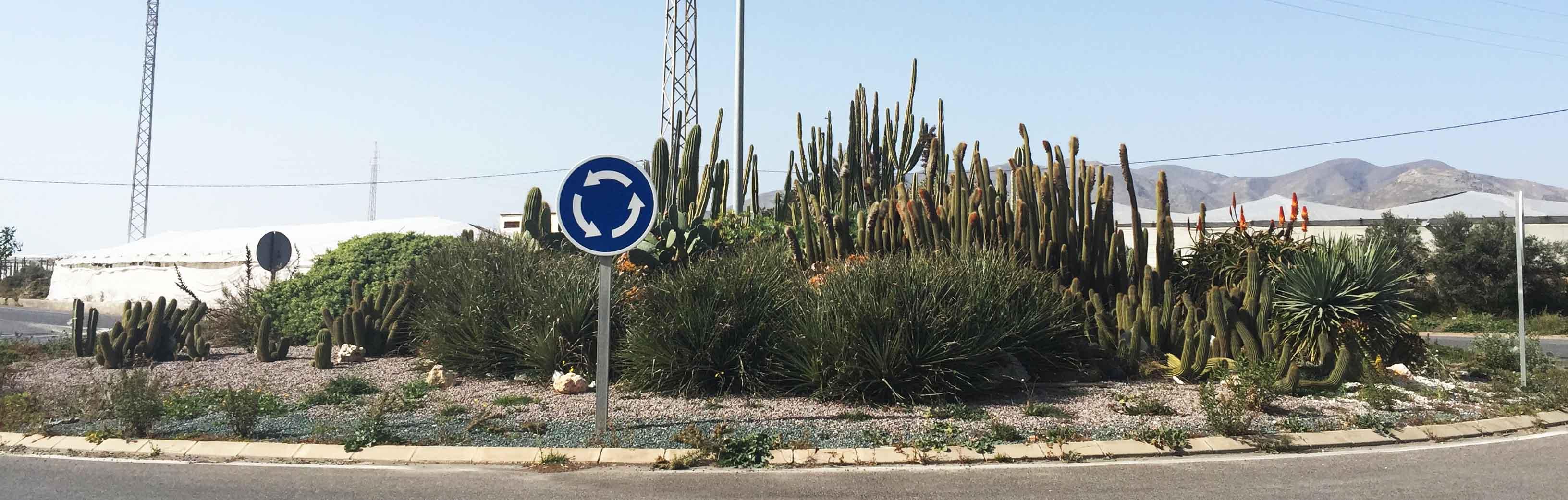 Rotonda Cactus Almería