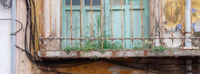Ruderales – La Vegetación de la Ciudad