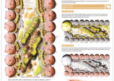 Diseño Gráficos y Láminas de Arquitectura y paisajismo Paisajismo