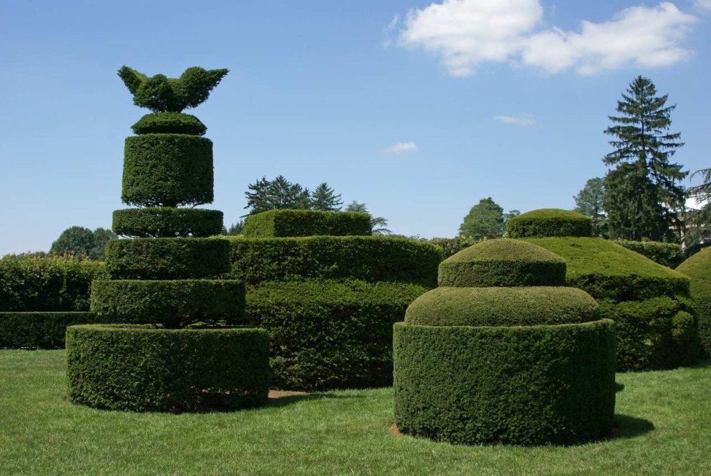 diseño de jardines jardineria topiaria