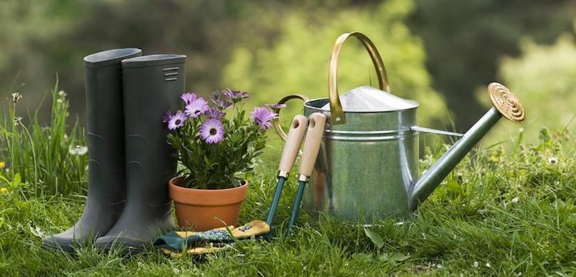 Proyecto de Jardinería: Vida en tus espacios exteriores