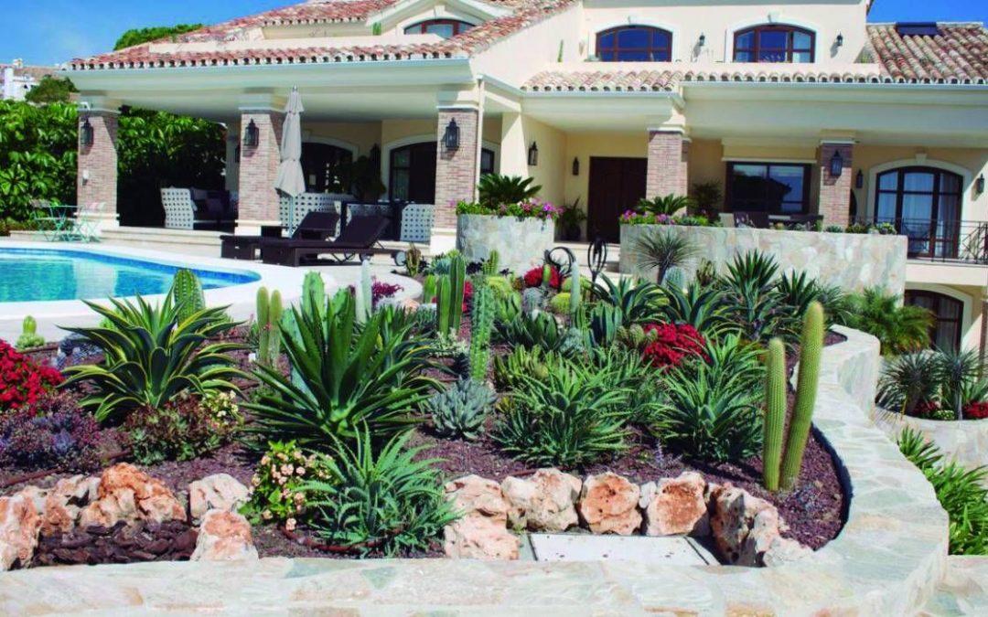 Plantas para un proyecto de jardinería y paisajismo en Almería